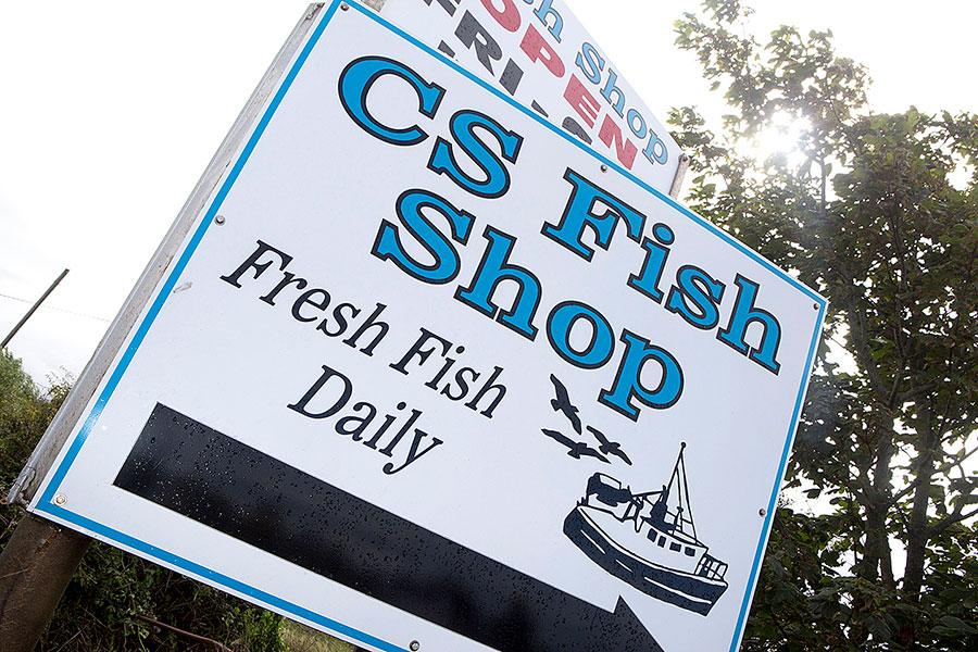 cs-fish-33